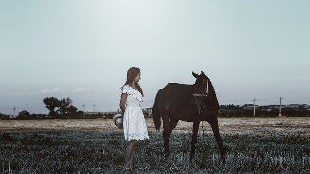 dívka s koněm
